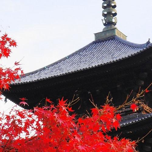 京都市南区